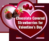 The Best Valentines Gift